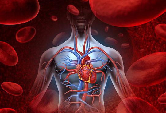 Kołatanie serca - Przychodnia Kardiologiczna KARDIOmed Zamość