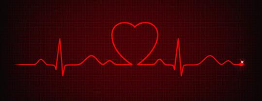 EKG Holter